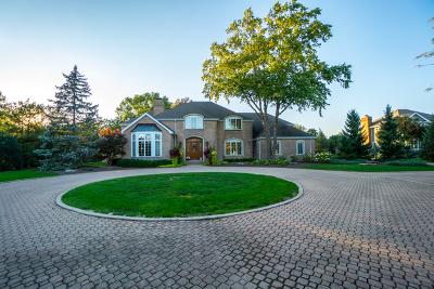 Bourbonnais Single Family Home For Sale: 315 Barrington Drive