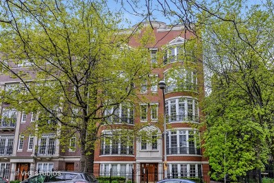 Condo/Townhouse For Sale: 626 West Wrightwood Avenue #1W