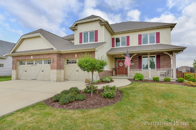Minooka, Channahon Single Family Home For Sale: 433 East Frontier Drive
