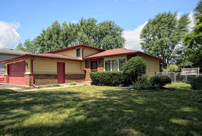 South Elgin Single Family Home For Sale: 870 James Street