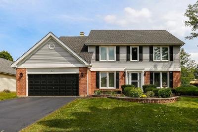 Bartlett Single Family Home For Sale: 1114 Fieldstone Lane