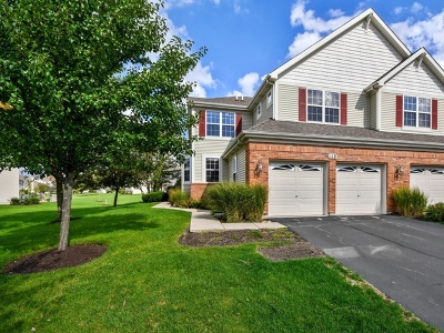 St. Charles Condo/Townhouse For Sale: 118 Birch Lane