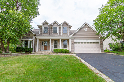 Schaumburg Single Family Home For Sale: 2320 Aimee Lane