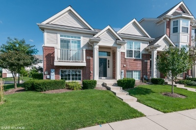 Hanover Park Condo/Townhouse For Sale: 1621 Dogwood Lane