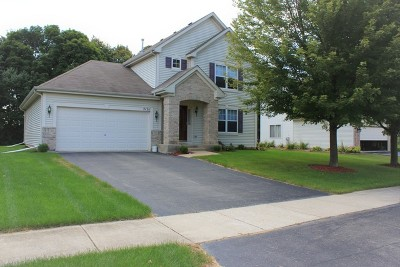Crest Hill Single Family Home For Sale: 21311 Prestwick Court