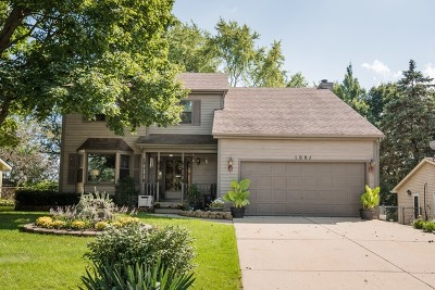 Bartlett Single Family Home For Sale: 1001 Apple Valley Drive