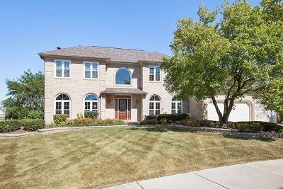 Naperville Single Family Home For Sale: 1517 Pine Lake Drive
