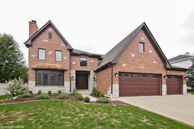 Arlington Heights Single Family Home For Sale: 2224 North Walnut Avenue