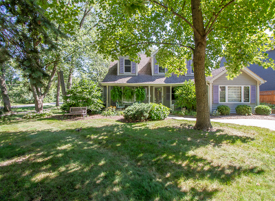 Downers Grove Single Family Home For Sale: 4501 Woodward Avenue