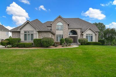 Burr Ridge Single Family Home For Sale: 6767 Fieldstone Drive