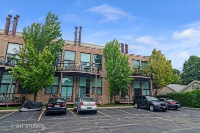 Condo/Townhouse For Sale: 2343 North Greenview Avenue #206