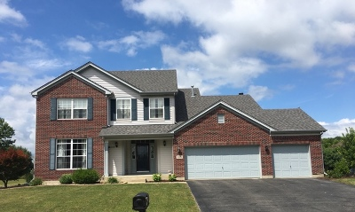 Minooka, Channahon Single Family Home For Sale: 313 Chief Court
