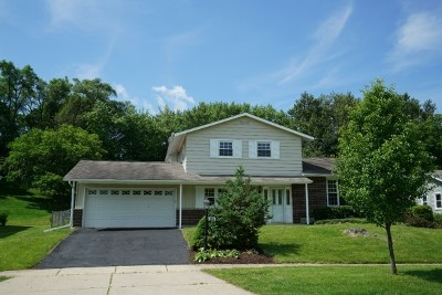 Hoffman Estates Single Family Home For Sale: 855 Park Lane