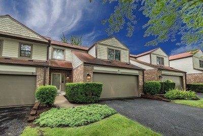Naperville Condo/Townhouse For Sale: 7s352 Augusta Lane