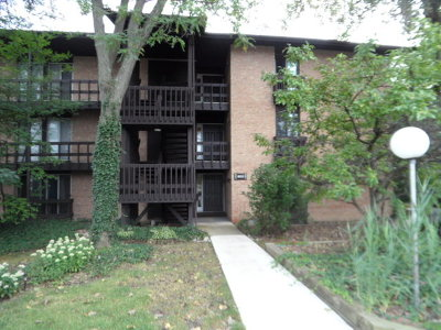 Lisle Condo/Townhouse For Sale: 1603 Maple Terrace #1D