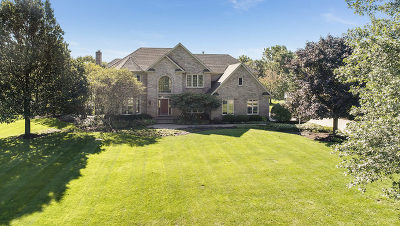St. Charles Single Family Home For Sale: 6n583 Promontory Court
