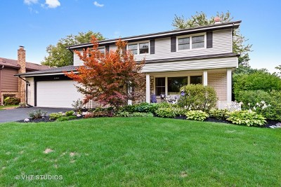 Mount Prospect Single Family Home For Sale: 1014 South Grace Street