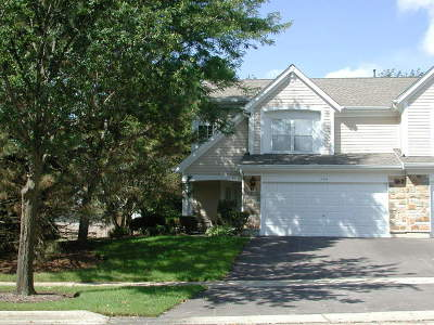 Schaumburg Condo/Townhouse For Sale: 204 Holmes Way