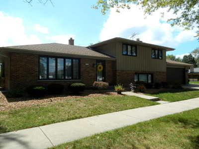 Orland Park Single Family Home For Sale: 7855 Wheeler Drive