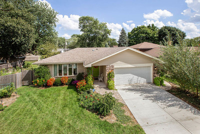South Holland Single Family Home For Sale: 17027 Dobson Avenue