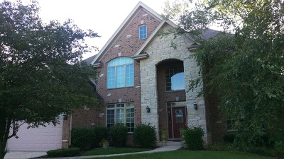 Orland Park Single Family Home For Sale: 13738 Legend Trail Lane