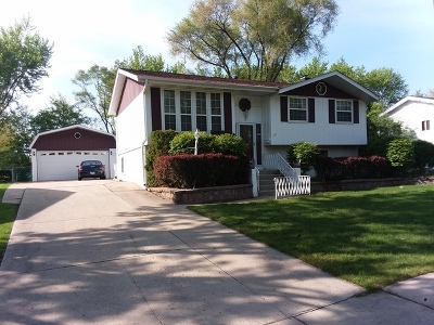 Schaumburg Single Family Home For Sale: 1134 Bradford Lane