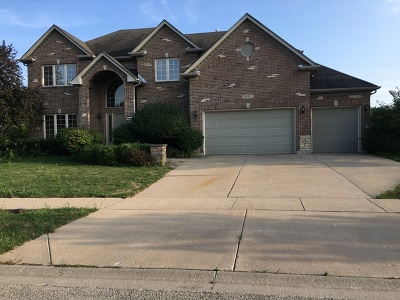 Plainfield Single Family Home For Sale: 26050 Whispering Woods Circle