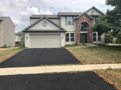 Bolingbrook Single Family Home For Sale: 186 South Cranberry Street
