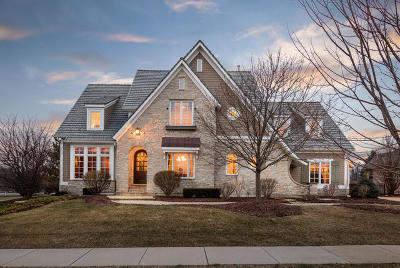 Kane County Single Family Home For Sale: 1690 Hannaford Drive