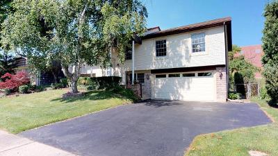 Buffalo Grove Single Family Home For Sale: 220 Stonegate Road