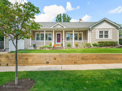 Glen Ellyn Single Family Home For Sale: 606 Revere Road