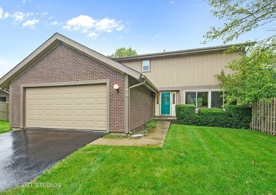Roselle Single Family Home For Sale: 544 Sequoia Trail