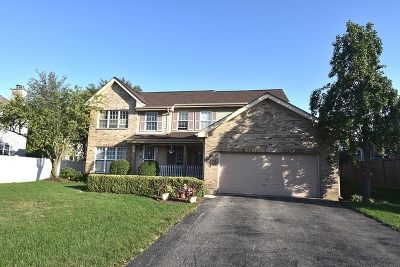 Lisle Single Family Home For Sale: 542 Spruce Lane