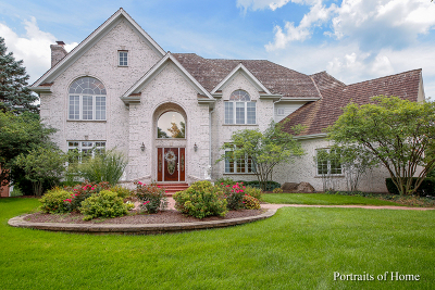 Naperville Single Family Home For Sale: 120 Settlers Drive