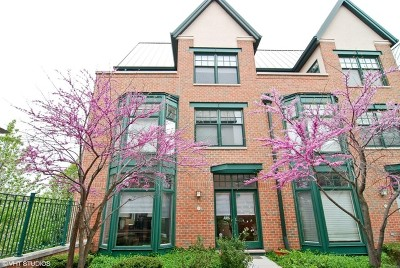Oak Park Condo/Townhouse For Sale: 101 North Euclid Avenue #12