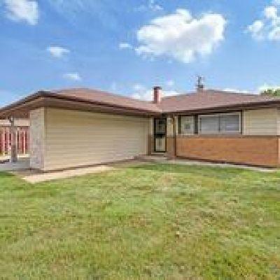 Dolton  Single Family Home For Sale: 15207 Meadow Lane