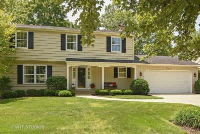 Palatine Single Family Home For Sale: 721 East Carpenter Drive