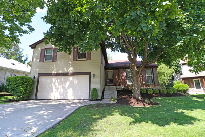 Buffalo Grove Single Family Home For Sale: 1449 Chase Court