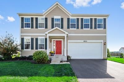Oswego Single Family Home For Sale: 4812 Butler Street