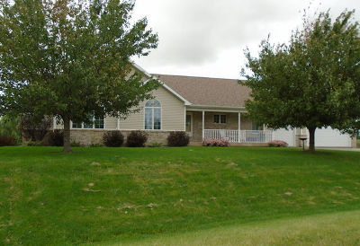 Ogle County Single Family Home For Sale: 10124 Raindance Drive