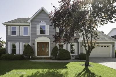 Hoffman Estates Single Family Home For Sale: 5045 Bardwick Court