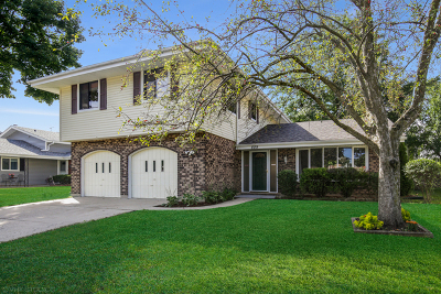 Schaumburg Single Family Home For Sale: 809 Westfield Lane