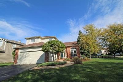 Bartlett Single Family Home For Sale: 415 Sundance Drive