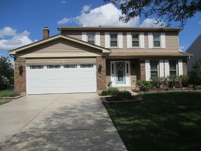 Naperville Single Family Home For Sale: 1317 Cortland Drive