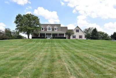 Elburn Single Family Home For Sale: 0s111 Kenmar Lane