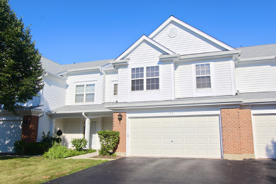 Schaumburg Condo/Townhouse For Sale: 195 Holmes Way
