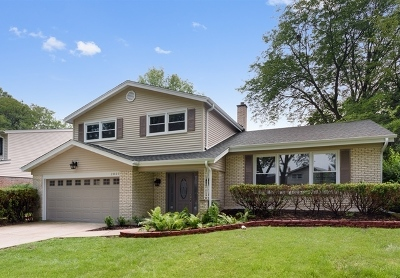 Arlington Heights Single Family Home For Sale: 2001 East Rosehill Drive