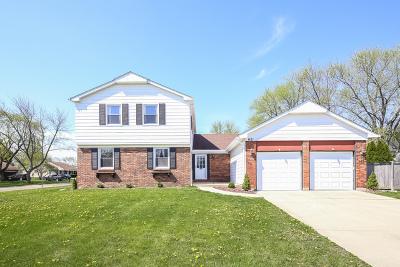 Buffalo Grove Single Family Home For Sale: 621 Essington Lane