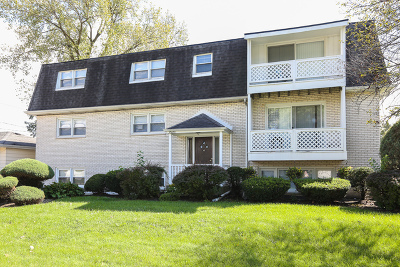 Palos Heights, Palos Hills Multi Family Home For Sale: 10601 South 81st Court