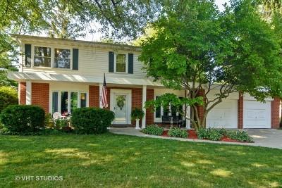 Palatine Single Family Home For Sale: 701 East Morris Drive